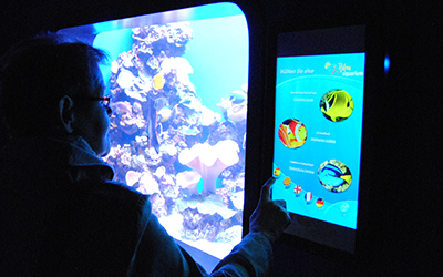 webpalma aquarium2